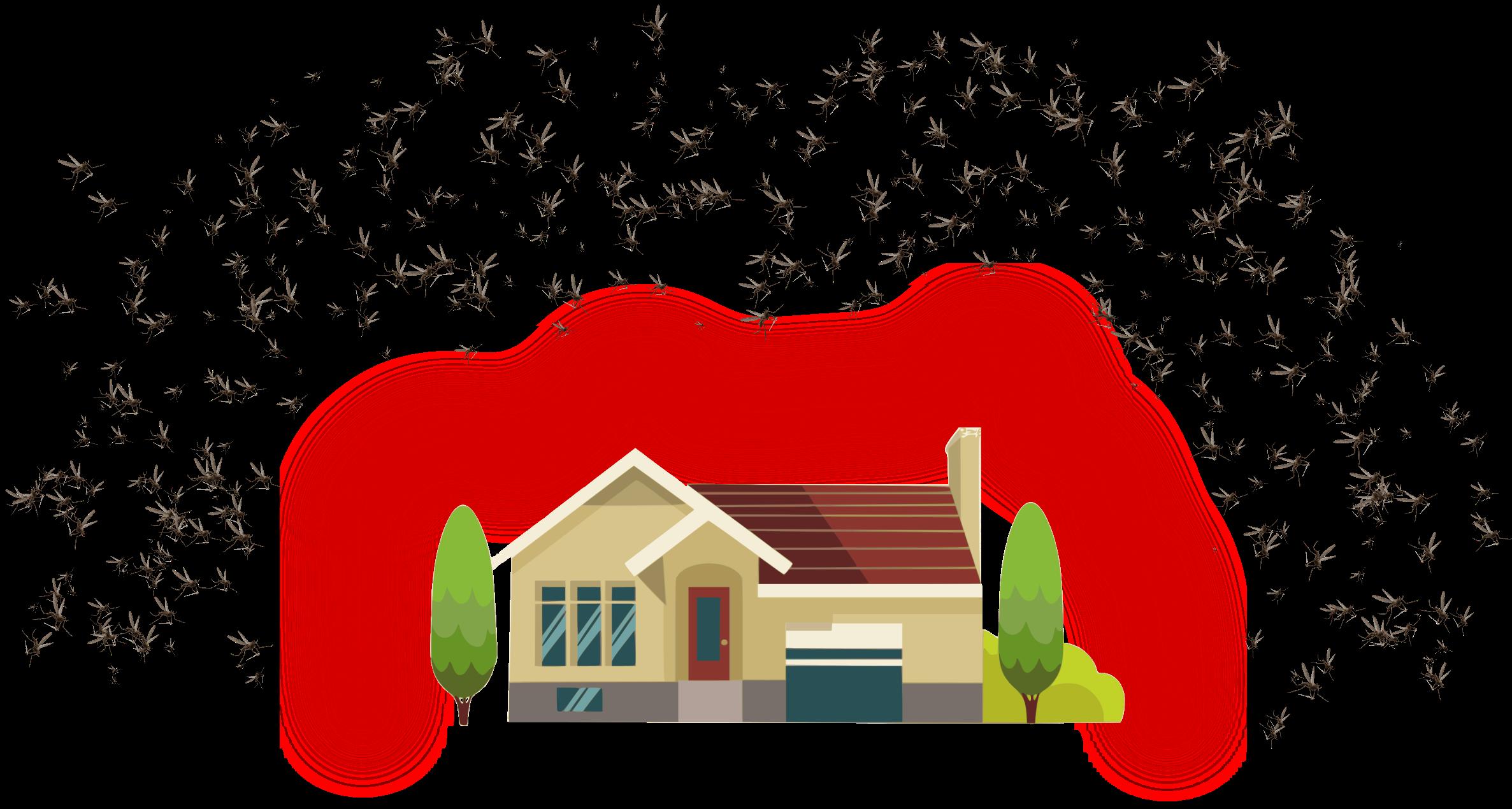 soluzioni anti zanzara a Roverbella - Mantova